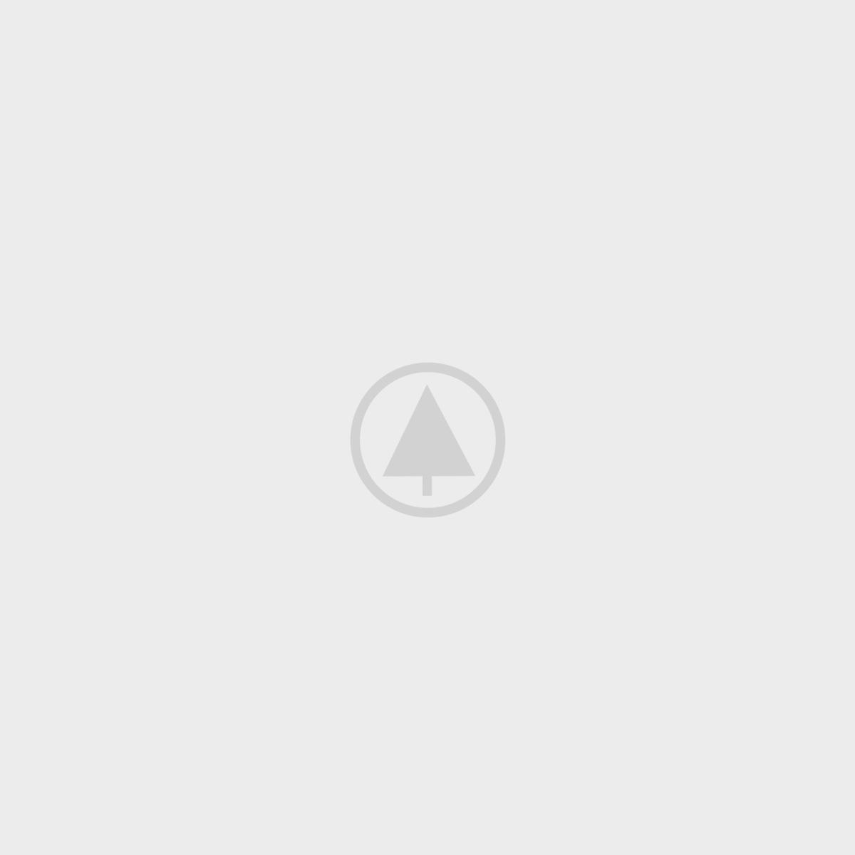 IELTS Online Coching Training - Netus eu mollis hac dignis - 3